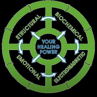 Chiropractic Laguna Beach CA Your Healing Power